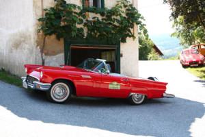 Oldtimer Cabrio - Saisonkennzeichen